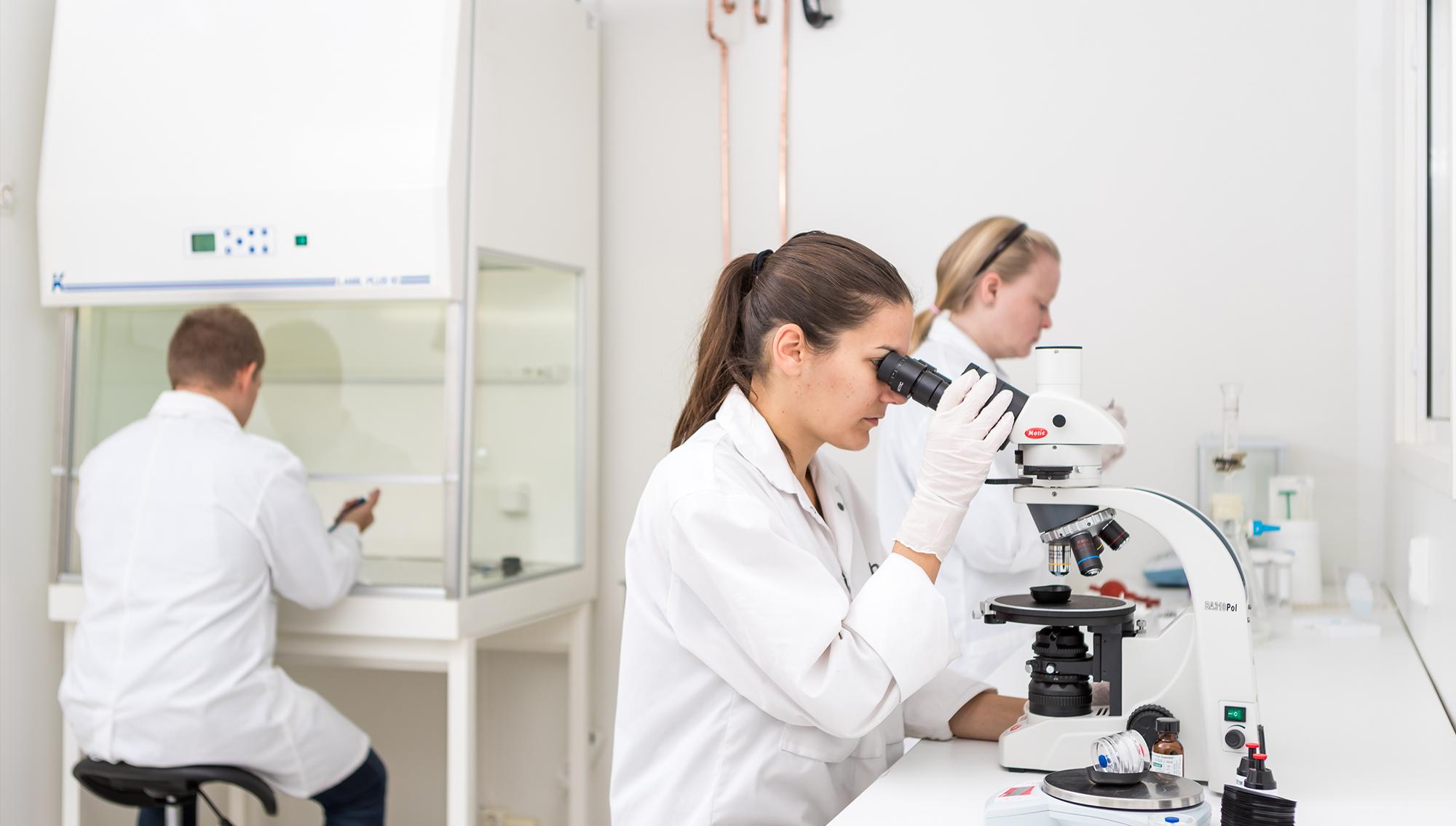 Hometutkimus edellyttää mikrobianalyysia