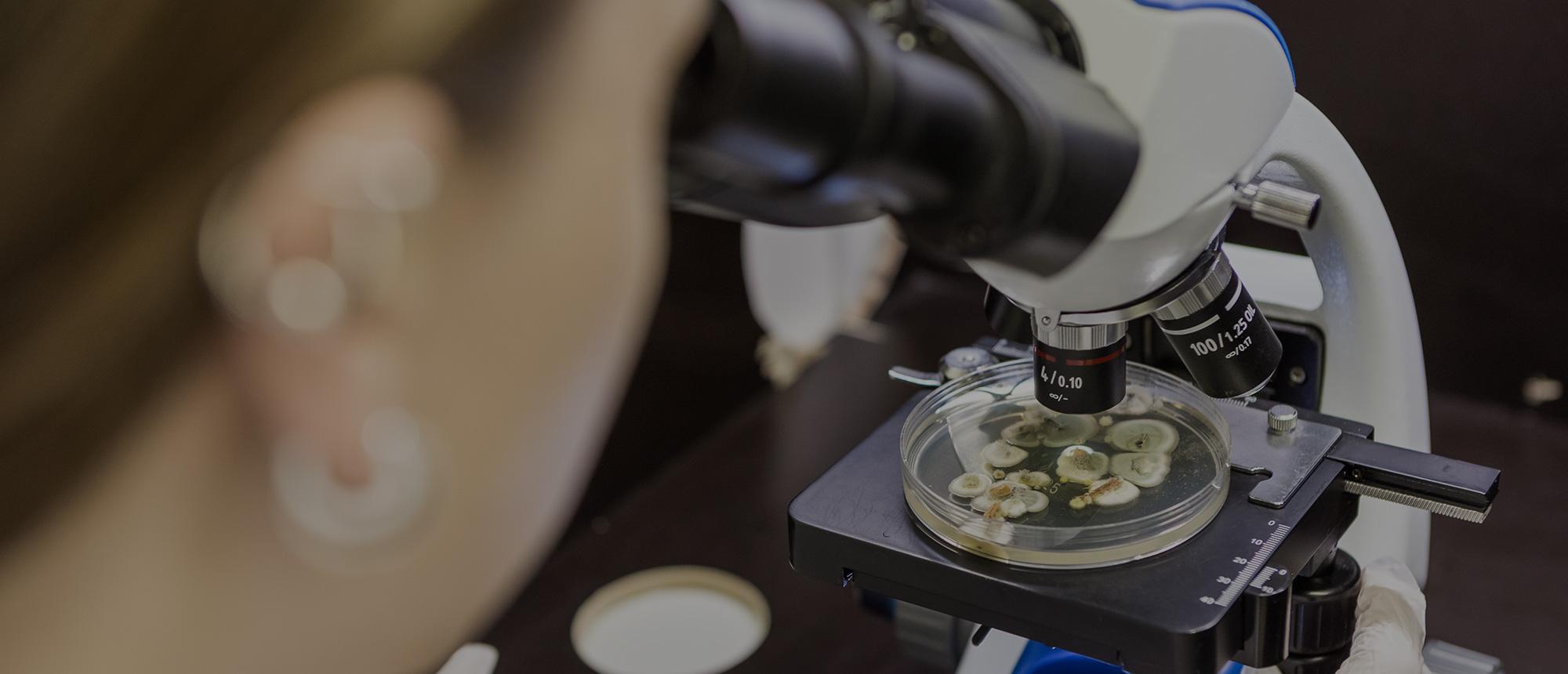 mikrobianalyysit